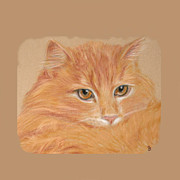 Orange Cat Pastels Posters - Orange Tabby  Poster by Jeanie Beline