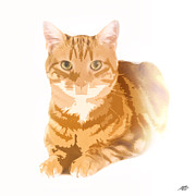 One Planet Infinite Places Posters - Orange Tabby Poster by Steve Huang