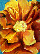 Floral Pastels Originals - Orange by Tiffany Howell