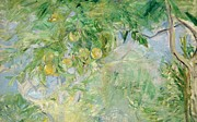 Orange Painting Prints - Orange Tree Branches Print by Berthe Morisot