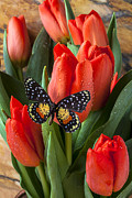 Speckled Posters - Orange tulips and butterfly Poster by Garry Gay