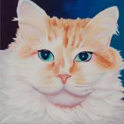 Caribbean Paintings - Orange White Cat Portrait by Robyn Saunders