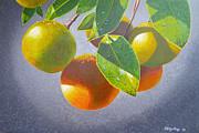 Oranges Print by Carey Chen