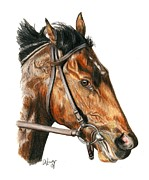 Thoroughbred Horse Art - Orb by Pat DeLong