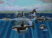 Marine Birds Framed Prints - Orca Play Framed Print by Carey Chen