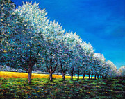 Cherry Tree Paintings - Orchard Row by Johnathan Harris