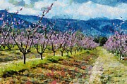 Orchard Views Print by Fran Woods