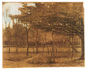 Impressionism Drawings Prints - Orchard Print by Vincent van Gogh