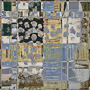 Grid Photos - Orchards and Farms Number 1 by Carol Leigh