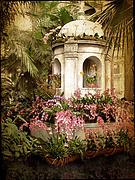 Orchid Show Posters - Orchid Exhibition Poster by Jessica Jenney