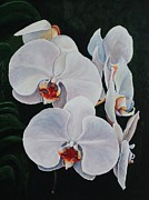 Pam Kaur Art - Orchid Fever by Pam Kaur