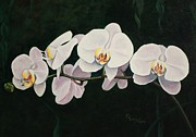 Pam Kaur Metal Prints - Orchid Melody Metal Print by Pam Kaur