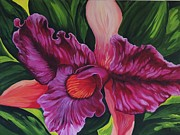 Jamaican Art Paintings - Orchid by Sharon Fox-Mould