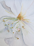 Melinda Saminski - Orchid Watercolor