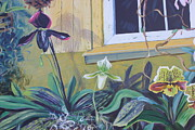 Window Art On Canvas Posters - Orchids at the Window Poster by Brigitte Nadeau