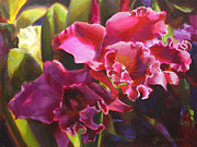 Karen Whitworth - Orchids in Magenta