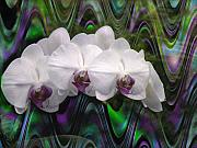 Engagement Digital Art Originals - Orchids Pizazz by Alice Terrill
