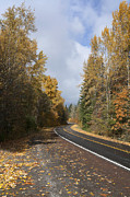 Oregon Autumn Highway Print by Peter French