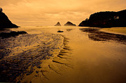 Bonnie Bruno - Oregon Coast Sunset
