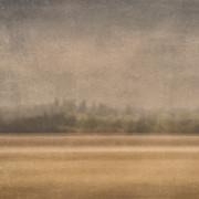 Oregon Rain Print by Carol Leigh
