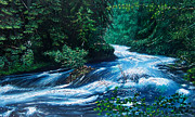 Beautiful Creek Painting Originals - Oregon River Run by Edward Pollick