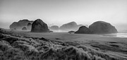 Sepia White Nature Landscapes Prints - Oregon Sea Stacks Print by Debra and Dave Vanderlaan