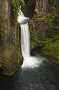River View Metal Prints - Oregons Toketee Falls Metal Print by Andrew Soundarajan