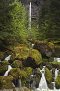 Spring Scenery Art - Oregons Watson Falls by Andrew Soundarajan