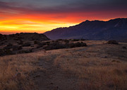 Red Sky Prints - Organ Mountain Dawn Print by Mike  Dawson