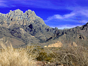 Las Cruces New Mexico Prints - Organ Mountain frosty top Print by Jack Pumphrey