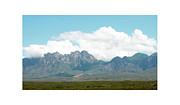 Las Cruces New Mexico Framed Prints - Organ Mountains after the Monsoon Framed Print by Jack Pumphrey