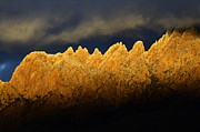 Las Cruces New Mexico Prints - Organ Mountains Magical Light Print by Bob Christopher