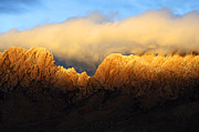 Golden Light Photos - Organ Mountains Symphony Of Light by Bob Christopher