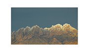 Las Cruces New Mexico Framed Prints - Organ Snowy Mountains Framed Print by Jack Pumphrey