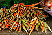 Sherri Robinson - Organic Heirloom Carrots