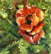 Sharen AK Harris - Oriental Poppies