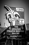 Balboa Island Framed Prints - Original Frozen Banana Sign on Balboa Island Picture Framed Print by Paul Velgos