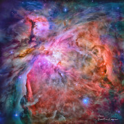 Constellation Digital Art - Orion by David Perry Lawrence