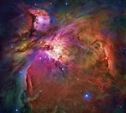 Stars Digital Art Metal Prints - Orion Nebula Metal Print by Dale Jackson
