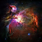 Heavenly Body Posters - Orion Nebula Poster by Ricky Barnard