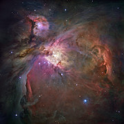 Nebulas Prints - Orion Nebula Print by Sebastian Musial