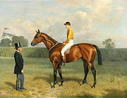 Jockey Painting Framed Prints - Ormonde Winner of the 1886 Derby Framed Print by Emil Adam