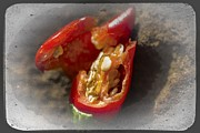 Hot Peppers Framed Prints - Ornamental Peppers Framed Print by Tessa Fairey