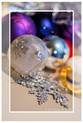Susan M. Smith Prints - Ornaments - Blank Print by Susan Smith