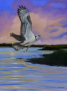 Waterfowl Paintings - Osprey at Pearl River Island by Phyllis Beiser