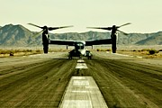 Planes Framed Prints - Osprey Takeoff Framed Print by Benjamin Yeager