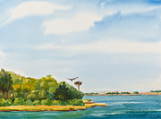 Wildlife Landscape Paintings - Ospreys on the Vineyard Watercolor Painting by Michelle Wiarda