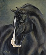 Black Stallion Paintings - Ossie by Catherine Davis