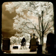 Gothic Graveyard Prints - Other Light Print by Gothicolors And Crows