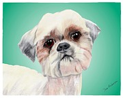 Animal Shelter Mixed Media - Otis - a former shelter sweetie by Dave Anderson